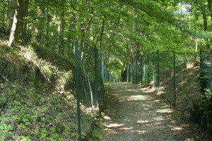 Part of the path goes through private property, so is lined with fences.